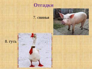 Отгадки 7. свинья 8. гусь