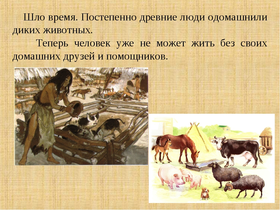Шло время. Постепенно древние люди одомашнили диких животных. Теперь человек...