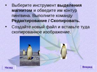 Выберите инструмент выделения магнитом и обведите им контур пингвина. Выполни