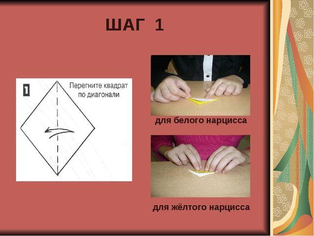 ШАГ 1 для белого нарцисса для жёлтого нарцисса