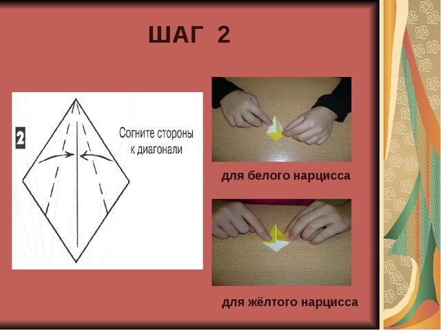 ШАГ 2 для белого нарцисса для жёлтого нарцисса