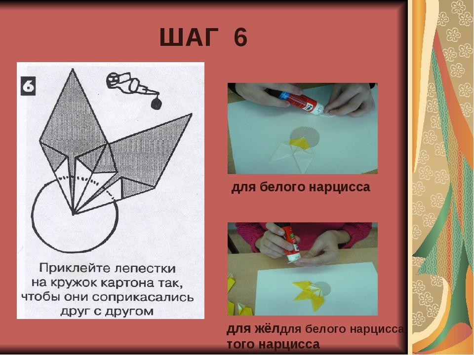 ШАГ 6 для белого нарцисса для жёлдля белого нарцисса того нарцисса