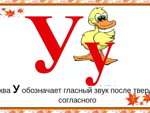 Буква У обозначает гласный звук после твердого согласного