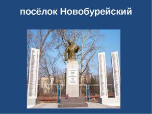 посёлок Новобурейский