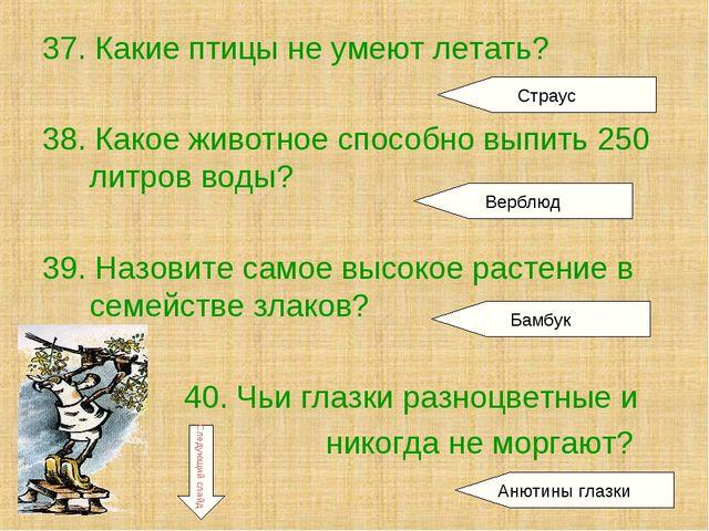 37. Какие птицы не умеют летать? 38. Какое животное способно выпить 250 литро...