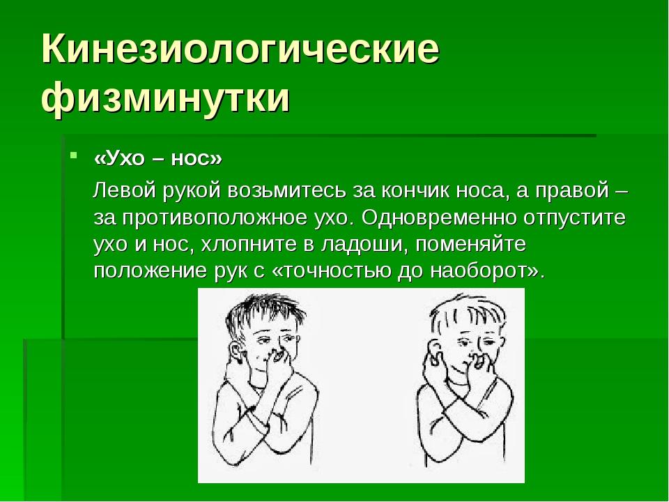 Кинезиологические физминутки «Ухо – нос» Левой рукой возьмитесь за кончик нос...