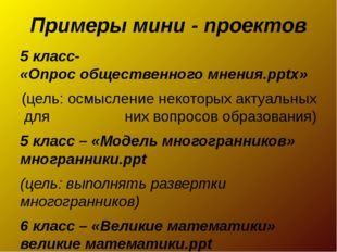 Примеры мини - проектов 5 класс- «Опрос общественного мнения.pptx» (цель: осм