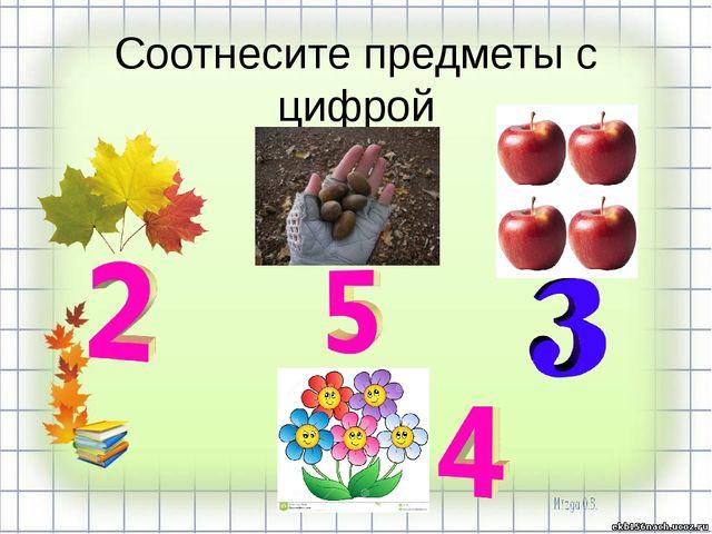 Соотнесите предметы с цифрой