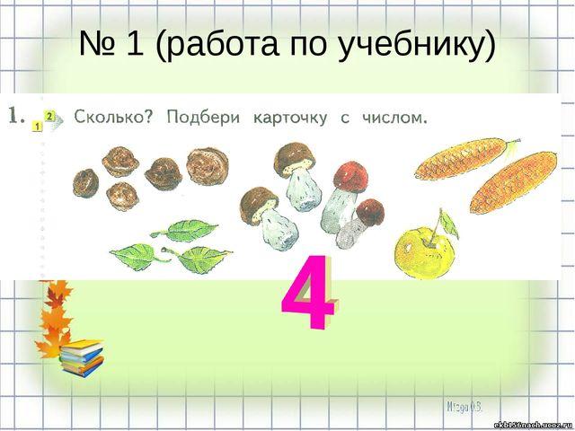 № 1 (работа по учебнику)