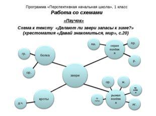 Программа «Перспективная начальная школа», 1 класс Работа со схемами «Паучок»
