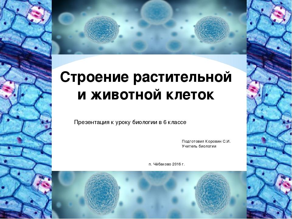 Строение растительной и животной клеток Презентация к уроку биологии в 6 клас...