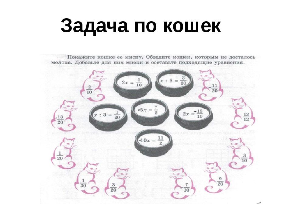 Задача по кошек