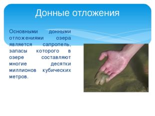 Основными донными отложениями озера является сапропель, запасы которого в озе