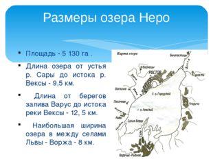 Площадь - 5 130 га . Длина озера от устья р. Сары до истока р. Вексы - 9,5 км