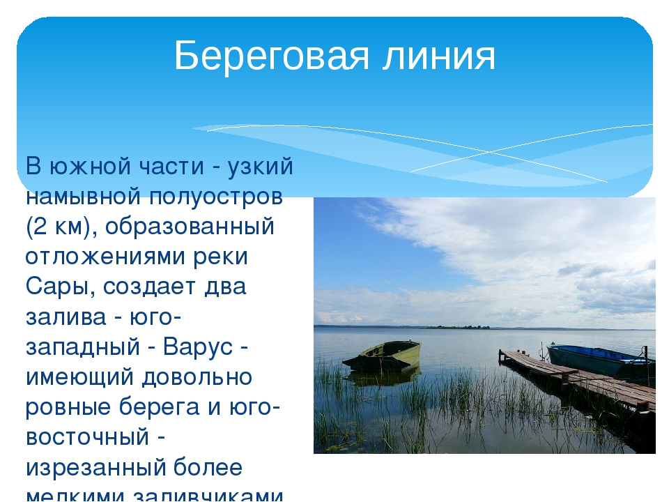 В южной части - узкий намывной полуостров (2 км), образованный отложениями ре...