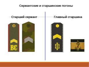 Сержантские и старшинские погоны Старший сержант Главный старшина