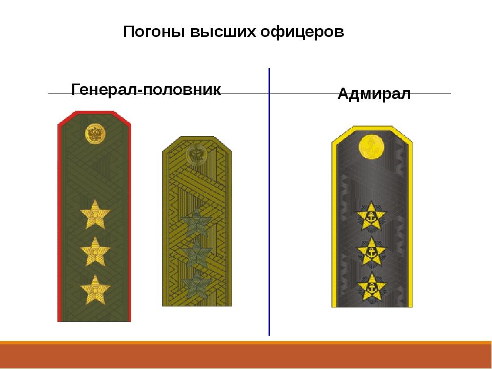 Звания в россии с картинками