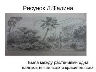 Рисунок Л.Фалина Была между растениями одна пальма, выше всех и красивее всех.