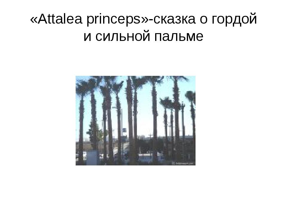 «Attalea princeps»-сказка о гордой и сильной пальме
