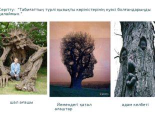 """шал ағашы Йемендегі қатал ағаштар адам келбеті Сергіту: """"Табиғаттың түрлі қы"""
