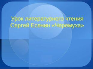 Урок литературного чтения Сергей Есенин «Черемуха»