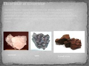 Австрия богата такими минералами, как железо, цинк и магнезит, имеются больши