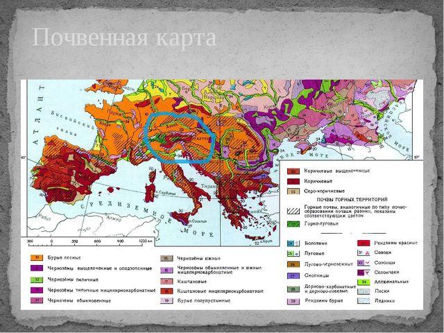 Почвенная карта