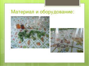 Материал и оборудование: