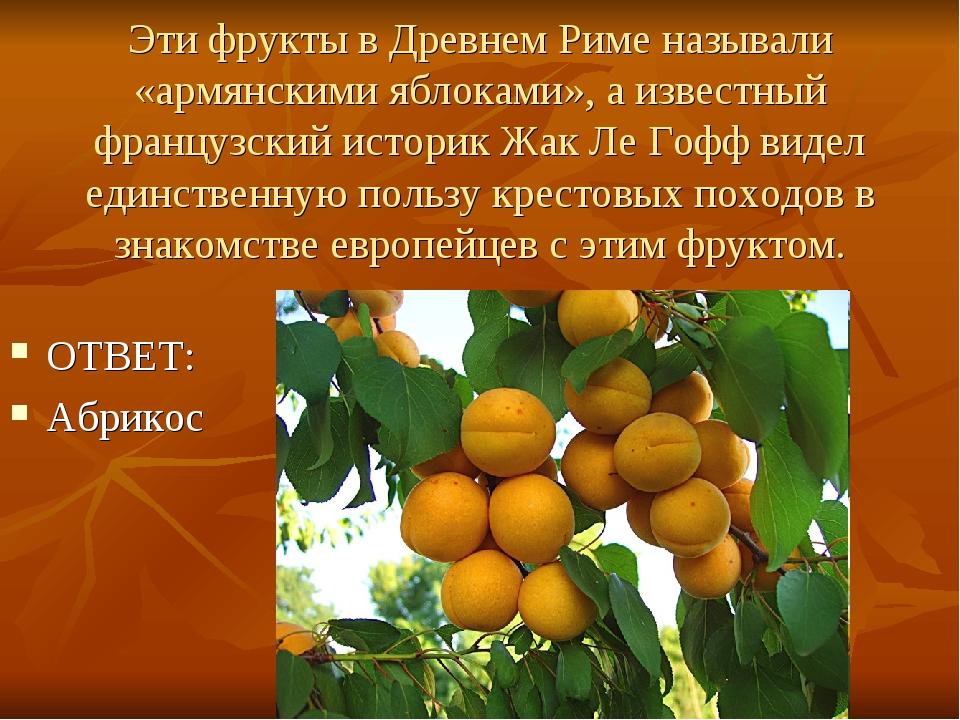 Эти фрукты в Древнем Риме называли «армянскими яблоками», а известный француз...