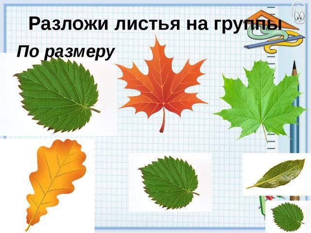 Разложи листья на группы По цвету