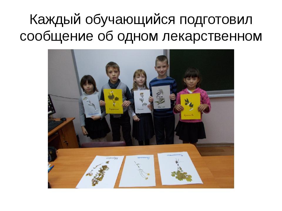 Каждый обучающийся подготовил сообщение об одном лекарственном растении