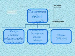 Беседы наблюдения Состояния воды в природе Жидкое ( болото, подземные воды, д