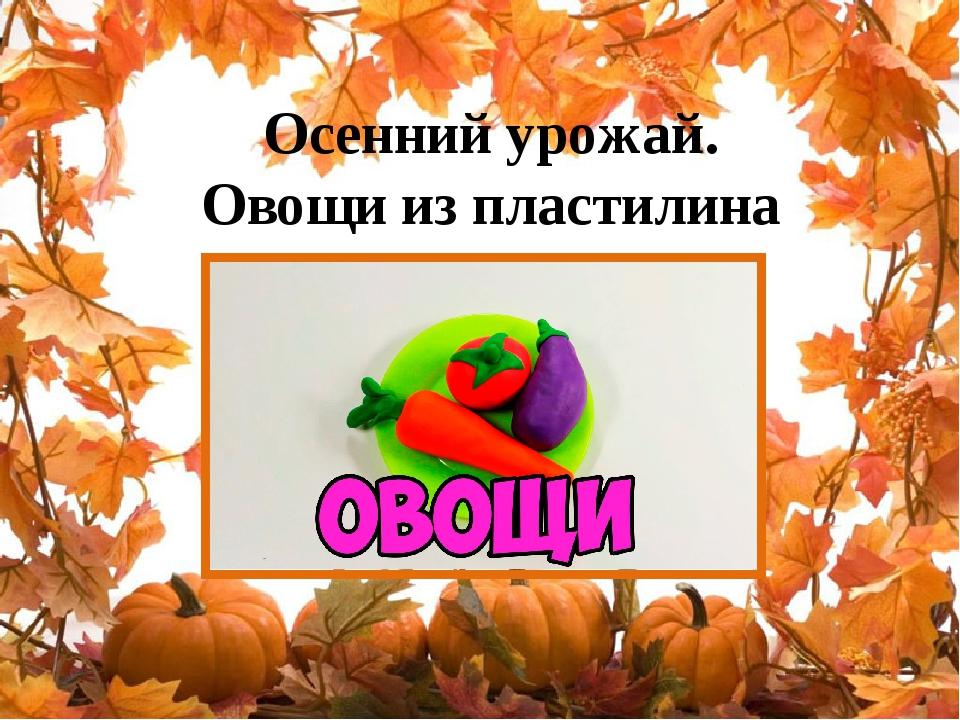 Осенний урожай. Овощи из пластилина