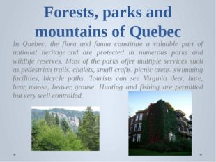 Forests, parks and mountains of Quebec In Quebec, the flora and fauna constit
