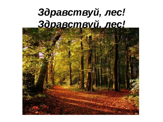 Здравствуй, лес! Здравствуй, лес! Полон сказок и чудес!