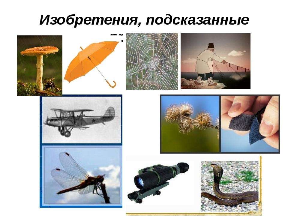 Изобретения, подсказанные природой