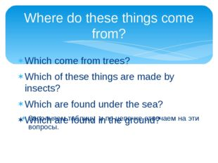 Where do these things come from? Which come from trees? Which of these things
