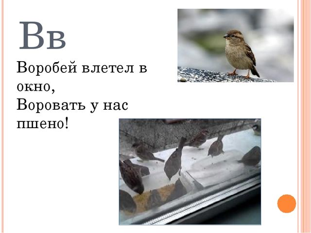 Вв Воробей влетел в окно, Воровать у нас пшено!