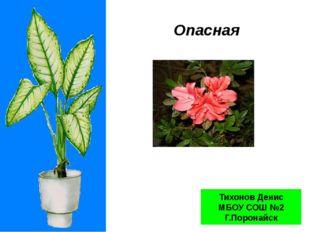 Опасная красота Тихонов Денис МБОУ СОШ №2 Г.Поронайск