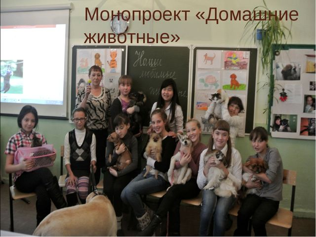 Монопроект «Домашние животные»
