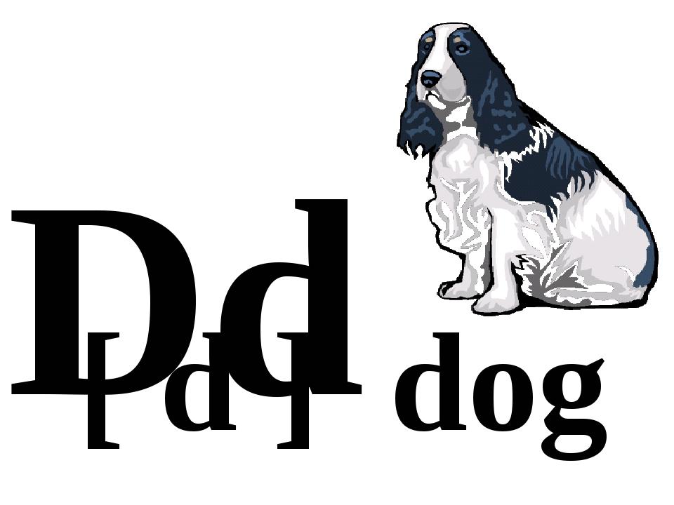 Dd [ d ] dog
