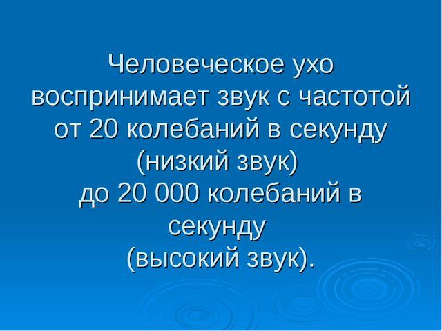 Человеческое ухо воспринимает звук с частотой от 20 колебаний в секунду (низк...
