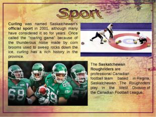 Curling was named Saskatchewan's official sport in 2001, although many have c