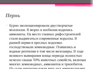Пермь Бурно эволюционировали двустворчатые моллюски. В морях в изобилии водил