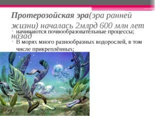 Протерозойская эра(эра ранней жизни) началась 2млрд 600 млн лет назад начинаю