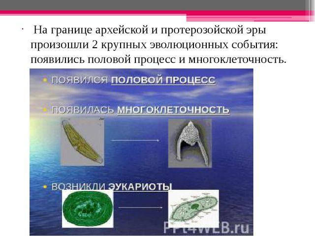 На границе архейской и протерозойской эры произошли 2 крупных эволюционных с...