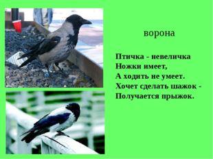 Птичка - невеличка Ножки имеет, А ходить не умеет. Хочет сделать шажок - Полу