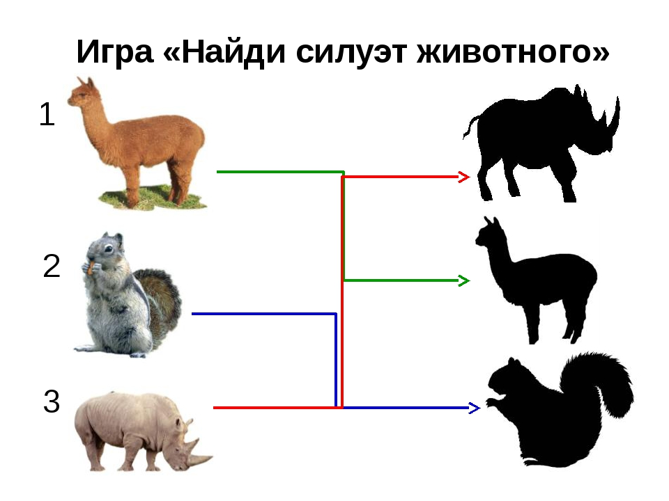 Игра «Найди контур предмета»