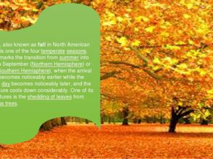 Autumn, also known as fall in North American English, is one of the four tem
