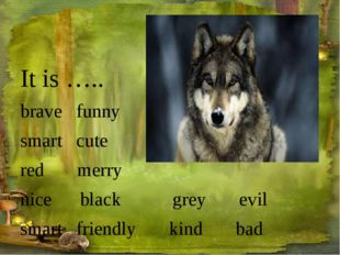 It is ….. brave funny smart cute red merry nice black grey evil smart friendl